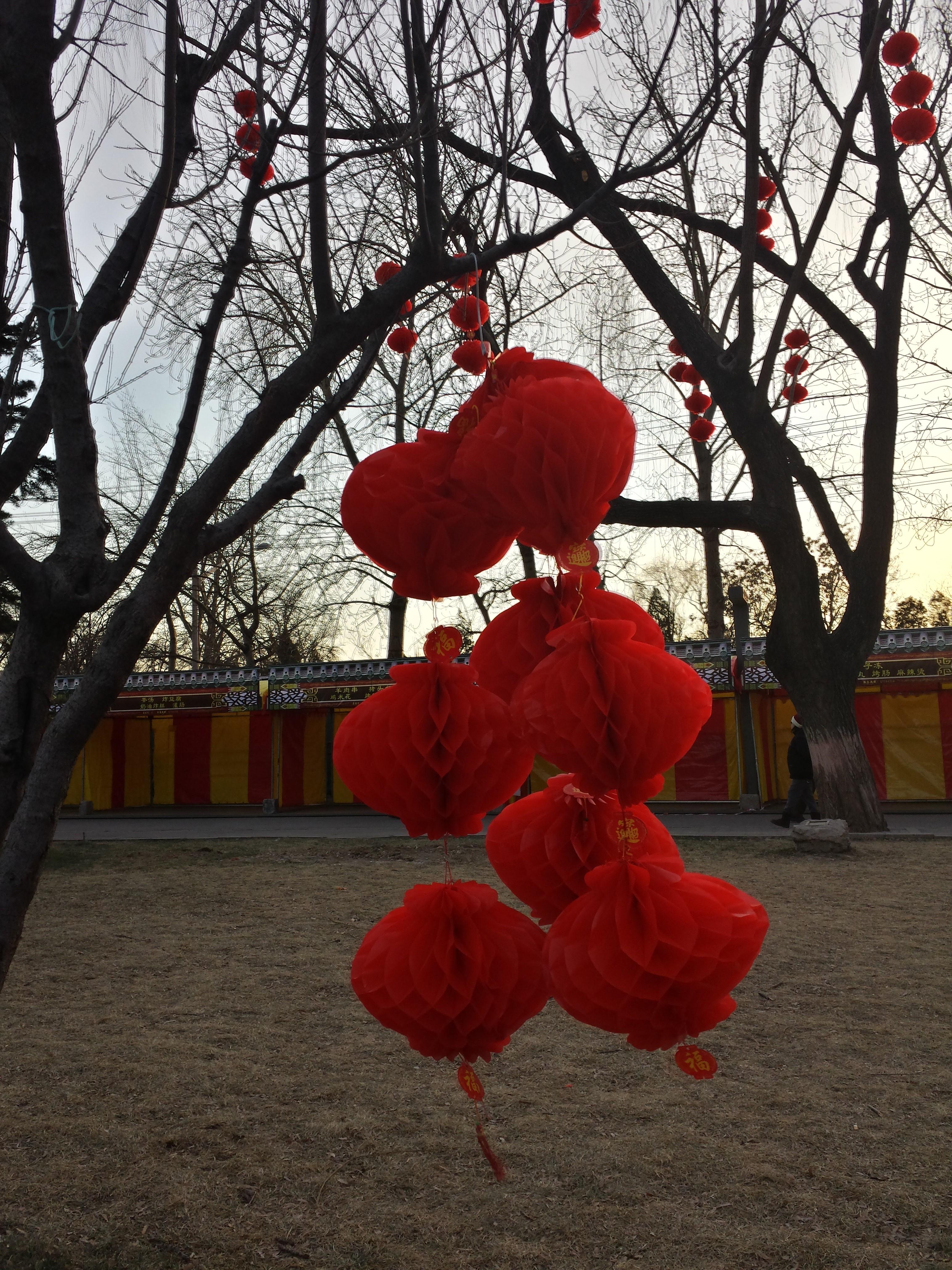 Beijing Lanterns